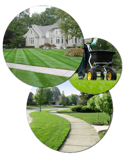 Knoxville lawncare examples